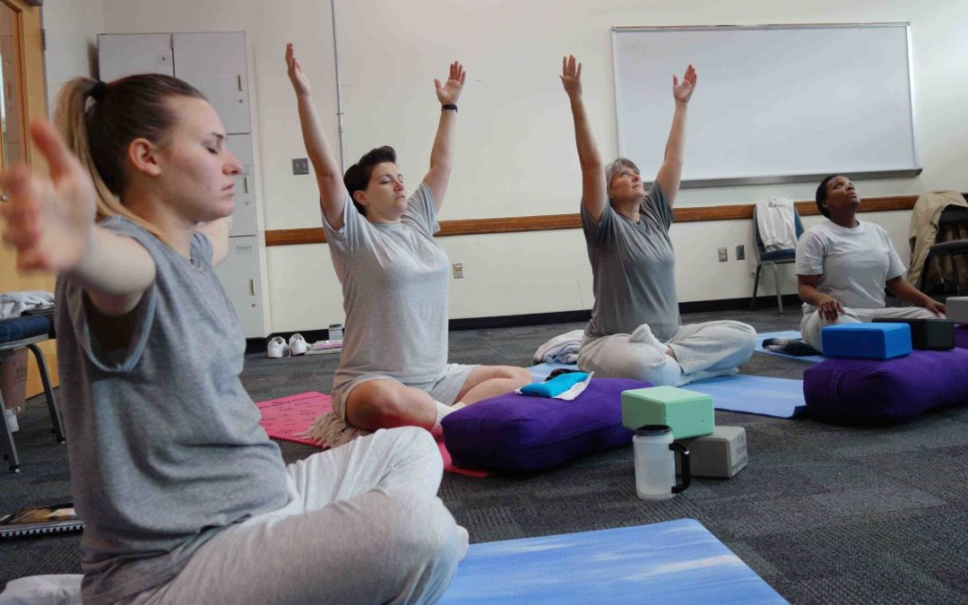 Minneapolis 2020 – Trauma-Informed Yoga Training